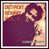 Detroit Sound, Vol. 5 by Various Artists