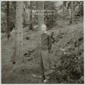 Looking Glass, Vol. 2 (Bury the Hatchet Bonus Album) de Jay-Jay Johanson