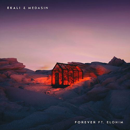 Forever (feat. Elohim) by Ekali