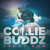 Legal Now de Collie Buddz