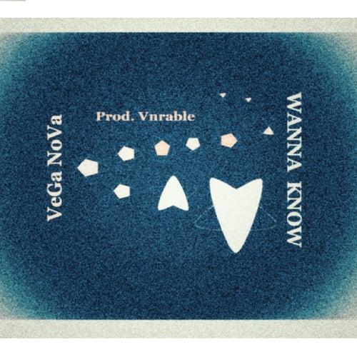 Wanna Know by Vega Nova