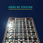Gods of Tekkno de Various Artists