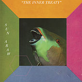 The Inner Treaty by Sun Araw