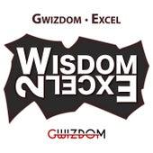 Wisdom 2 Excel by Gwizdom