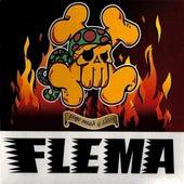 Pogo, Mosh y Slam de Flema