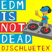 EDM Is Not Dead de DjSchluetex