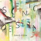 Scenic Design de David Cook