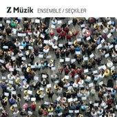 Z Müzik Ensemble de Various Artists