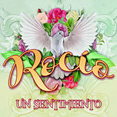Rocio un Sentimiento by Various Artists
