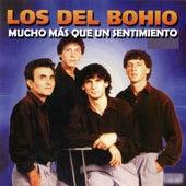 Mucho Más Que un Sentimiento by Los Del Bohio