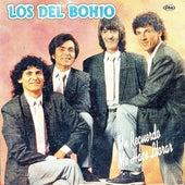 Un Recuerdo Me Hace Llorar by Los Del Bohio