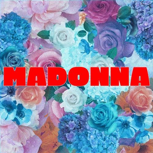 Madonna von Virgin Suicide