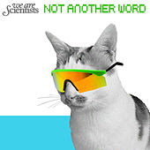 Not Another Word by We Are Scientists