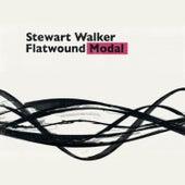 Flatwound-Modal de Stewart Walker