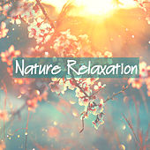 Nature Relaxation by Various Artists