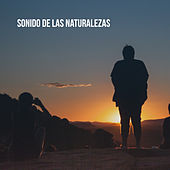 Sonido de las naturalezas by Various Artists