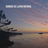 Sonidos de lluvia natural by Various Artists