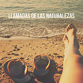 Llamadas de las naturalezas by Various Artists