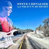 La vie d'un musicien by Steve Chevalier
