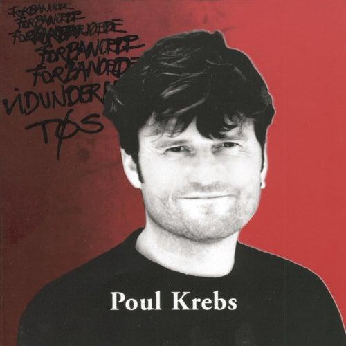 Forbandede Vidunderlige Tøs by Poul Krebs