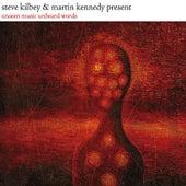 Unseen Music Unheard Words von Steve Kilbey