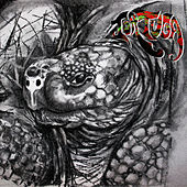 Tortuga by Tortuga