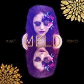 H.U.R.T.: The Remixes de Meld