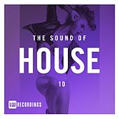 The Sound Of House, Vol. 10 - EP by Various Artists