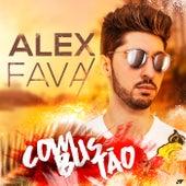 Combustão de Alex Fava