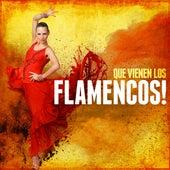 Que Vienen Los Flamencos! by Various Artists