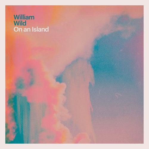 On an Island by William Wild