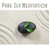 Pure Zen Meditation de Sounds Of Nature