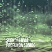 Sueño Lluvia Profunda Sonido de Various Artists