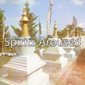 Spirits Aroused de Meditación Música Ambiente