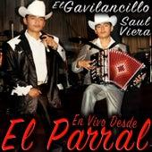 En Vivo Desde El Parral by Saul Viera el Gavilancillo