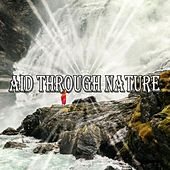 Aid Through Nature by Classical Study Music (1)