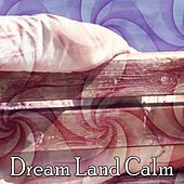 Dream Land Calm by All Night Sleeping Songs To Help You Relax