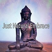 Just Natural Embrace von Lullabies for Deep Meditation