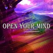 Open Your Mind de Massage Tribe
