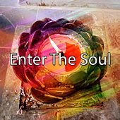 Enter The Soul de Nature Sounds Artists
