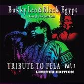 Tribute to Fela, Vol. 1 (Live at the Jazz Cafe) de Bukky Leo