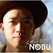 Start Line de N.O.B.U!!!