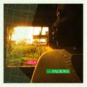 Paukwa de Various Artists