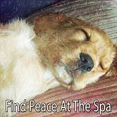 Find Peace At The Spa de Best Relaxing SPA Music
