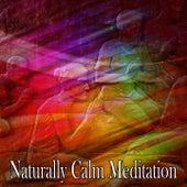 Naturally Calm Meditation de Musica Relajante