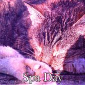Spa Day by Relaxing Spa Music