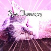 Spa Therapy de Best Relaxing SPA Music