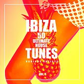 Ibiza, Vol. 2 (50 Ultimate House Tunes) de Various Artists