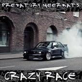 Crazy Race - Single by Predatory Meerkats
