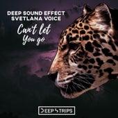 Cant Let You Go - Single de Deep Sound Effect